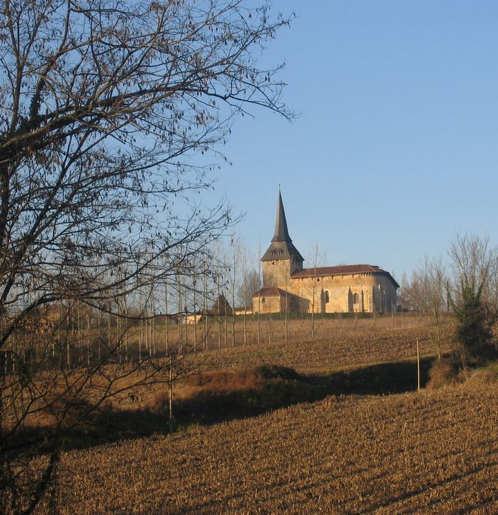 Une petite église au milieu des mais coupés. Son fin clocher d'ardoise semble percer le ciel bleu d'hiver.