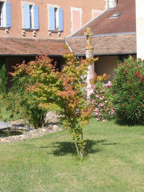 Une croix recouverte de lichens ocre jaune trône au milieu d'une végétation aux couleurs d'automne.