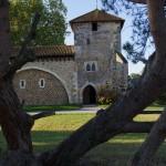 Entre les branches d'un pin couché qui fait habituellement la plus grande joie des enfants, on aperçoit l'entrée et le clocher de la Vieille église.