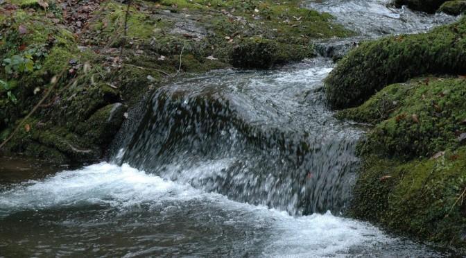 Baptême du Seigneur : l'eau et l'Esprit