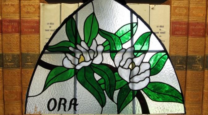 Fleurs de magnolia en vitrail