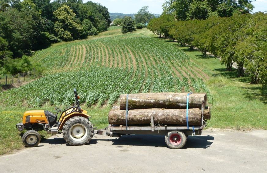 tracteur avec un chargement de billes de bois