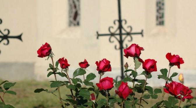 Dimanche de la Trinité : Au cœur de l'Amour