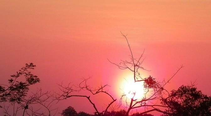 Transfiguration : L'Humanité en lumière