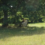 Un frère parle avec un hôte à l'ombre d'un chêne.