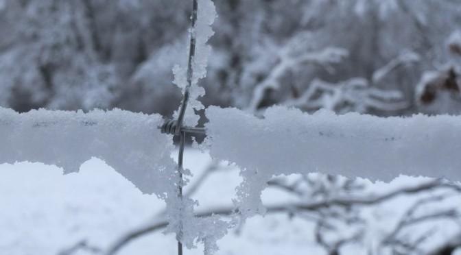 5<sup>e</sup> dimanche : Jésus vient nous réchauffer